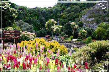 See lovely City gardens on your shore excursion with Hawkes Bay Scenic Tours