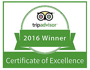 Trip Advisor Certificate of Excellence for Napier Tours
