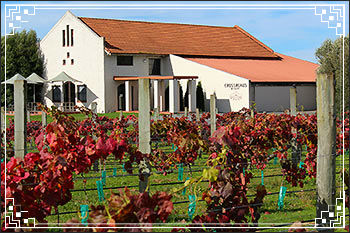 Visit-boutique-Napier-Wineries-set-in-vineyards-with-Hawkes-Bay-Scenic-Tours