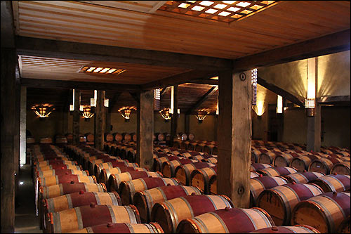 Wine Tasting in the Church Road Winery Cellar door with Hakes Bay Scenic Tours