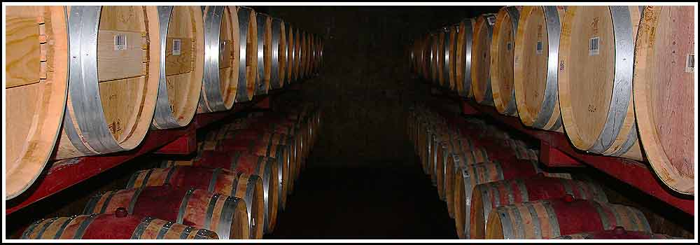 Enjoy Napier wine tasting and a full winery tour as part of our Napier Wine Tours, Hawkes Bay Scenic Tours