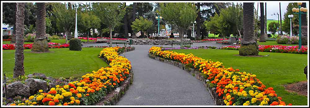 Hawkes Bay Scenic Tours - typical Napier city gardens, Clive-Square is an example