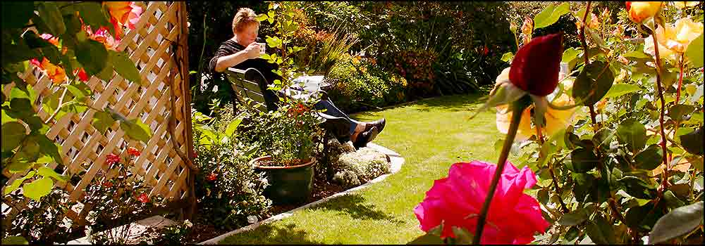 Enjoy the award winning gardens at Nest haven, Napier Bed and Breakfast