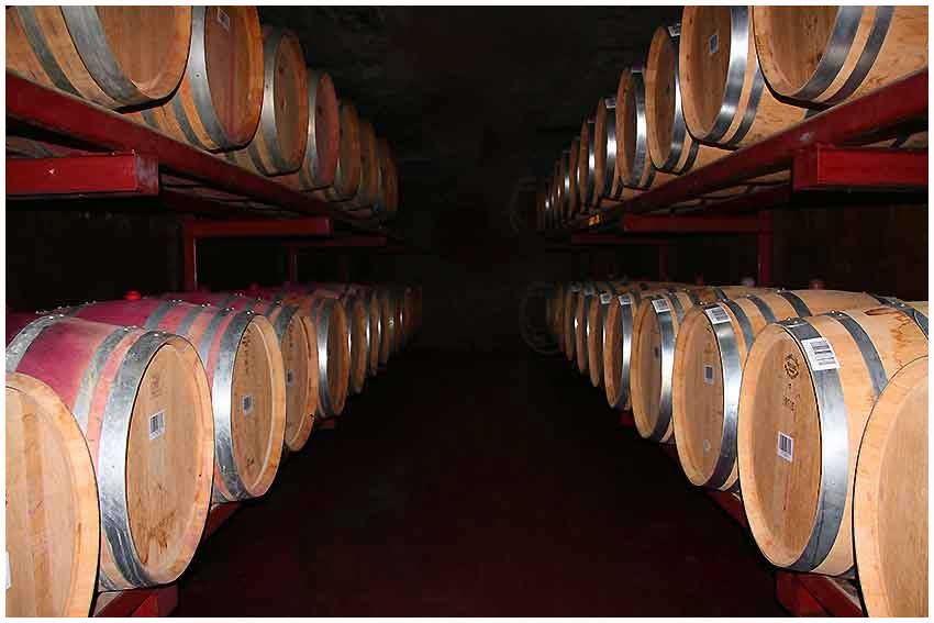 Hawkes Bay Scenic Tours - Church-Road-Winery-Explore these Caves-and-Barrel rooms with us.