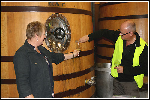 Hawkes Bay Scenic Tours - Sampling-from-a-French-Cuve before wine and food matching
