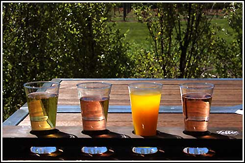 Enjoy a selection of Ciders with Hawkes Bay Scenic Tours