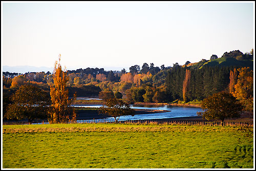 Drive through postcard countryside with Hawkes Bay Scenic Tours