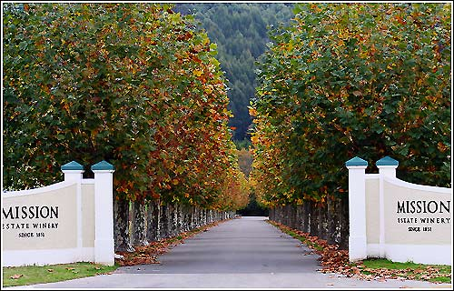 Visit the Mission Estate Winery on all Hawkes Bay Scenic Tours Napier Wine Tours