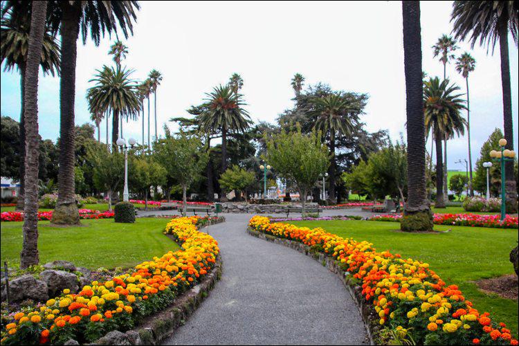 Clive Square gardens, Napier