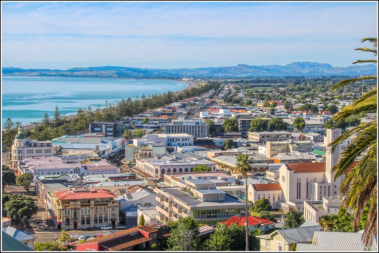 Napier from our fantastic city ookout