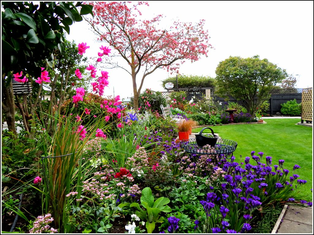 Front yard gardens at Nest Haven Bed and Breakfast, Napier