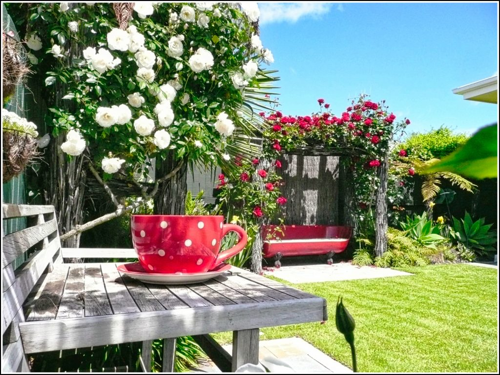 Rear garden private seating areas at Nest Haven Bed and Breakfast Napier