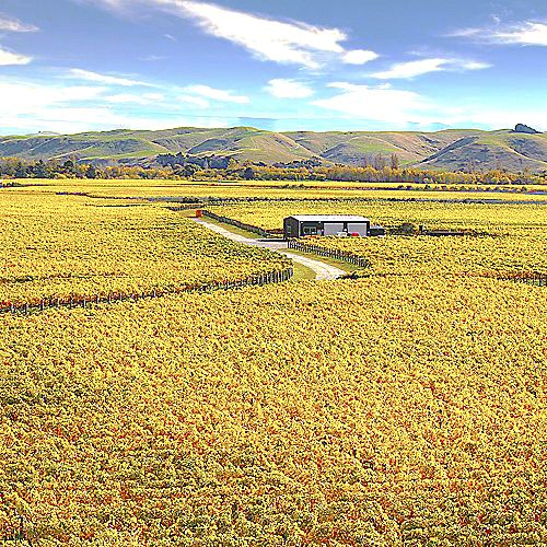Your Hawkes Bay Wine Tour includes World the famous Gimblett Gravels.